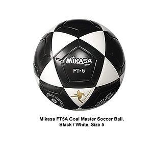 Mikasa ball 6.jpg