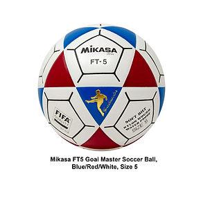 Mikasa ball 2.jpg