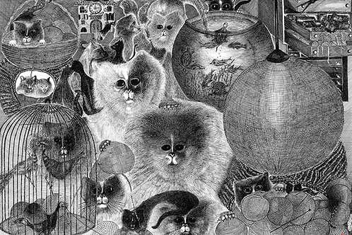 CATS AND BALLS OF WOOL