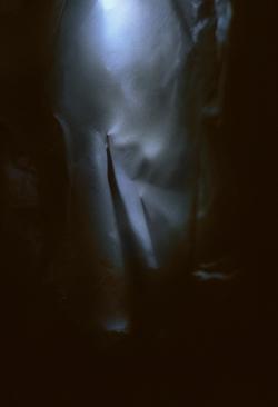 Roots III, 2014