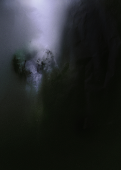Roots IV, 2014