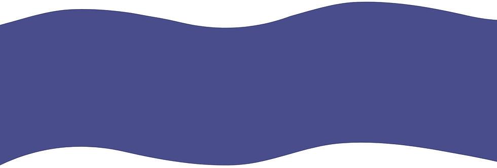 Purple Rove Strip Color.jpg