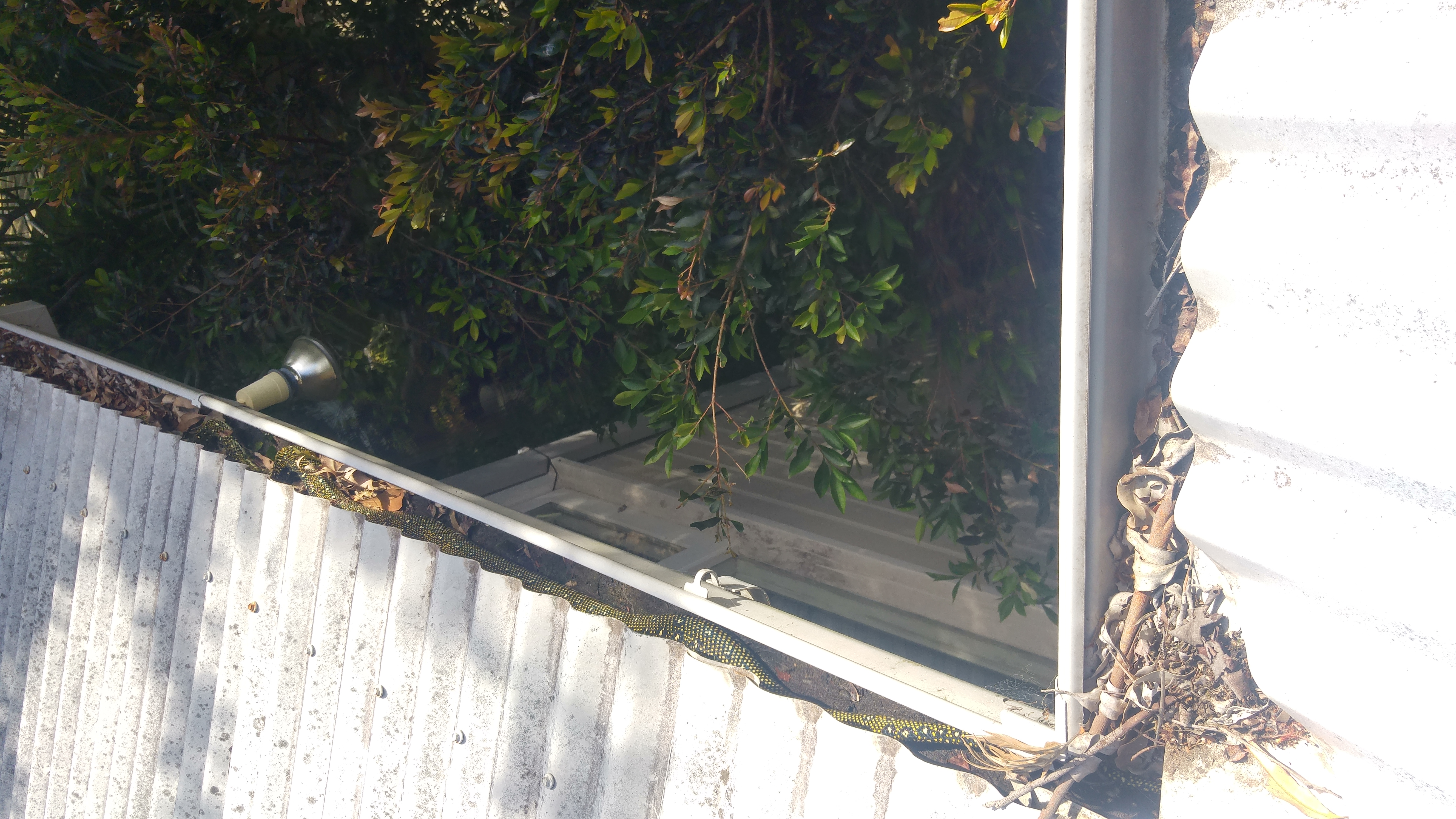 Gutter Cleaning Central Coast Gutterclean New South Wales