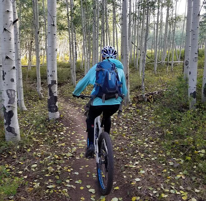 Moab-Aspen-Trees.jpg