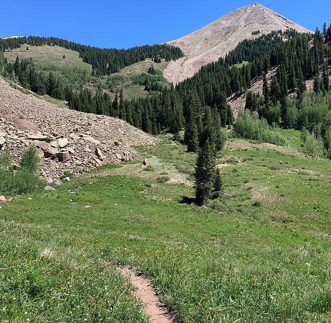 The_Whole_Enchilada_Trail.jpg
