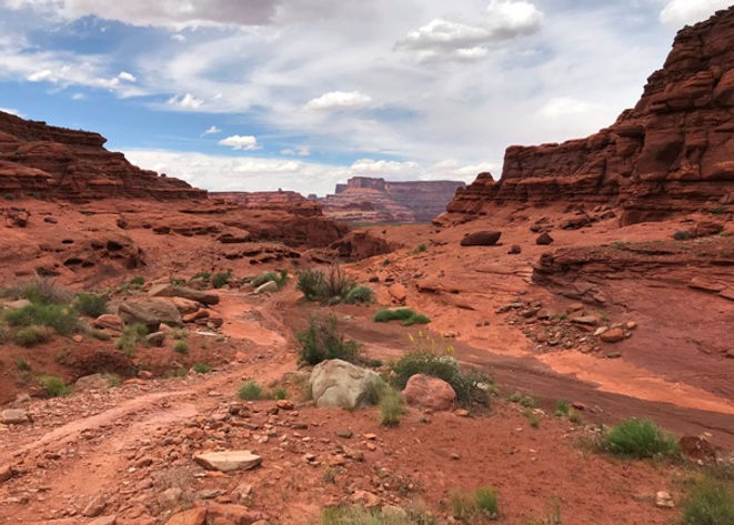 Lockhart_Basin_ATV_Trail.JPG
