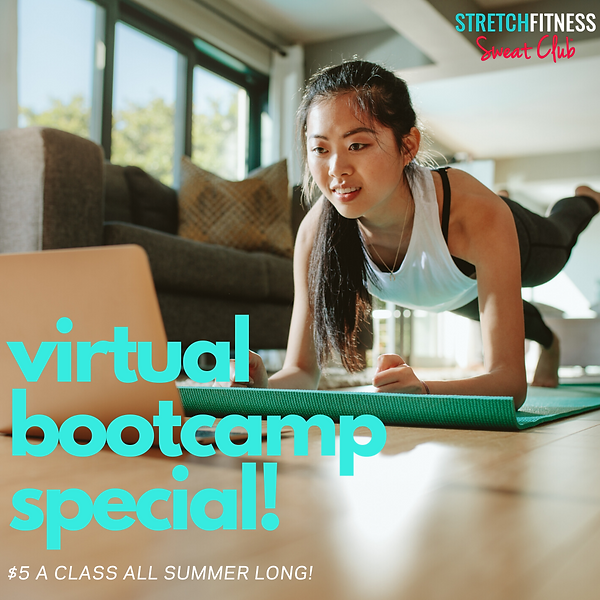 virtual bootcamp special!.png
