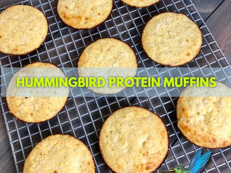 HUMMINGBIRD PROTEIN MUFFINS