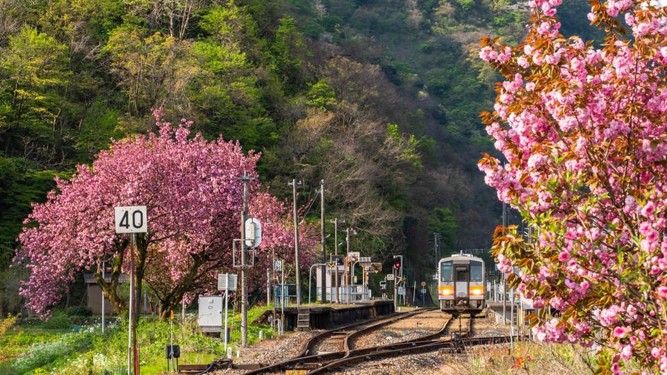 糸魚川と信濃大町を結ぶ大糸線