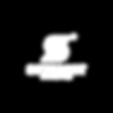 Skysight_logo_white.png