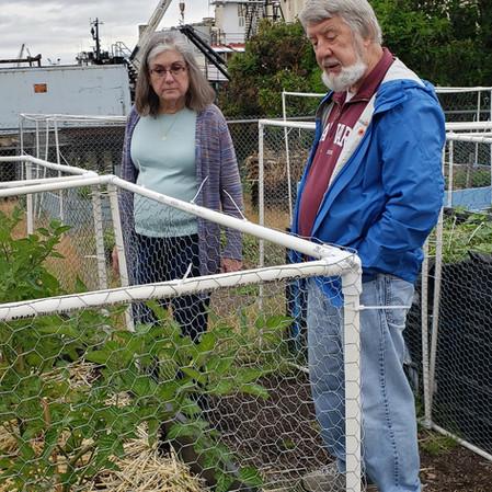 Deborah Hack and Master Gardener Paul Winterstein examine the flowers that will soon be cherry tomatoes.