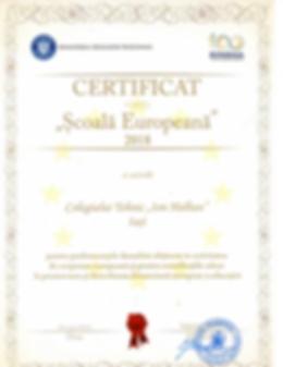 SCOALA EUROPEANA_049-1.png