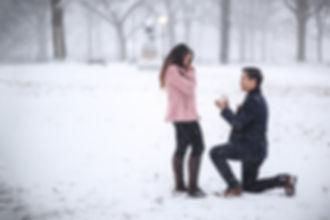Romantic snowy central park proposal