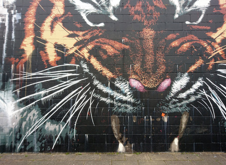 Stumbling upon a Tiger in Glasgow