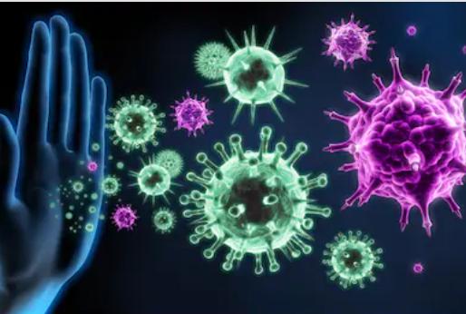 Lo último para Fortalecer nuestro Sistema Inmune para protegernos mejor