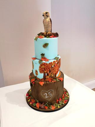 Falcon/Woodland cake