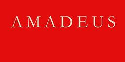 Bureau Amadeus, veilig reizen, eigen aut