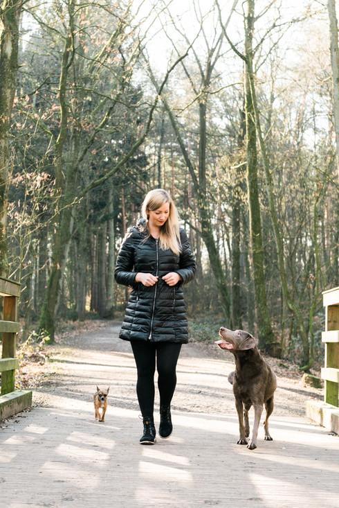hundefotografie_heike_moellers-2590.jpg
