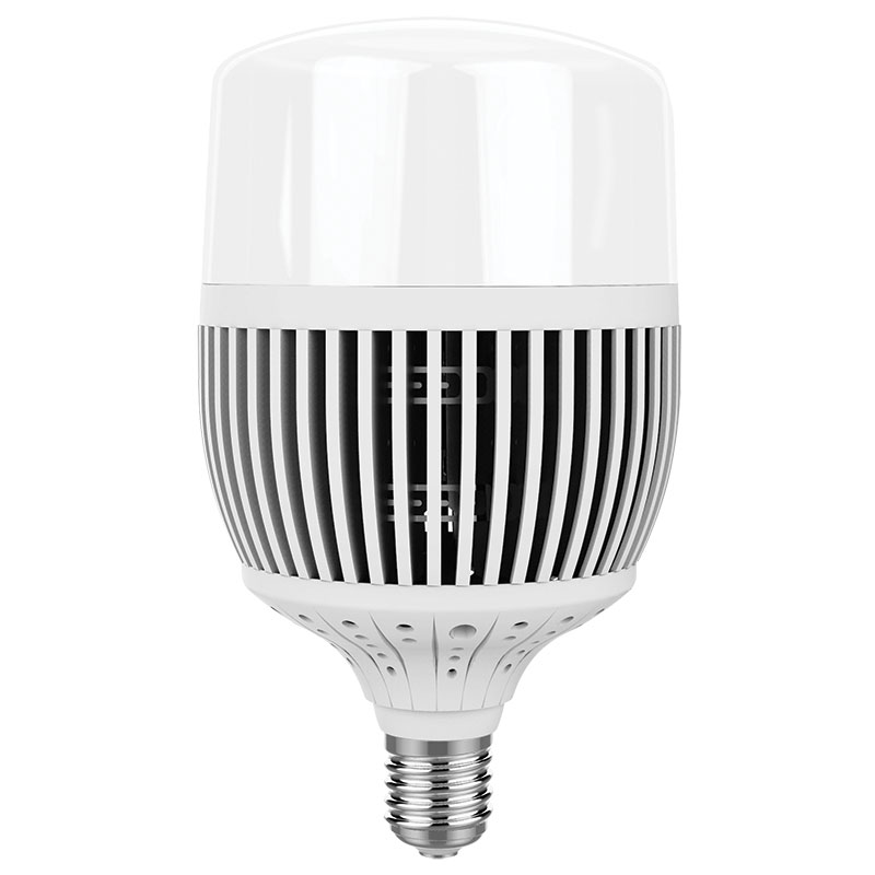 Bulbo T LED 100W