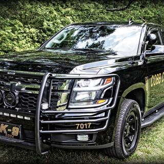 Cobb K9 Maddox Car .jpg