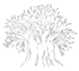 logo-tree-black-and-white.png