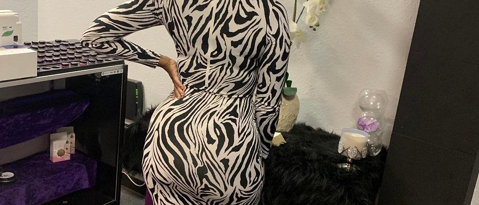 Zebra Skirt Set