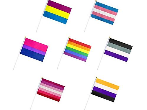 LGBT+ Flags
