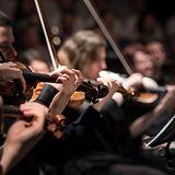 Violine Spieler