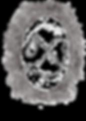 SDS Logo_black.png
