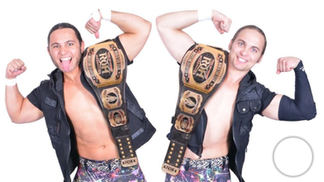 Wrestling tag-team duo Young Bucks find success outside WWE