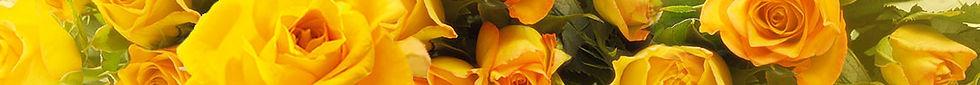 flower-banner6.jpg