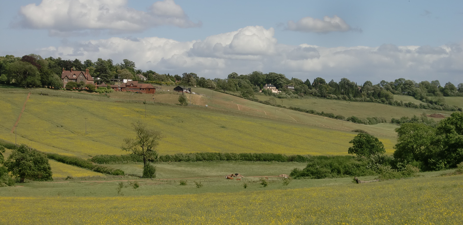 Dingley from Dingley Valley