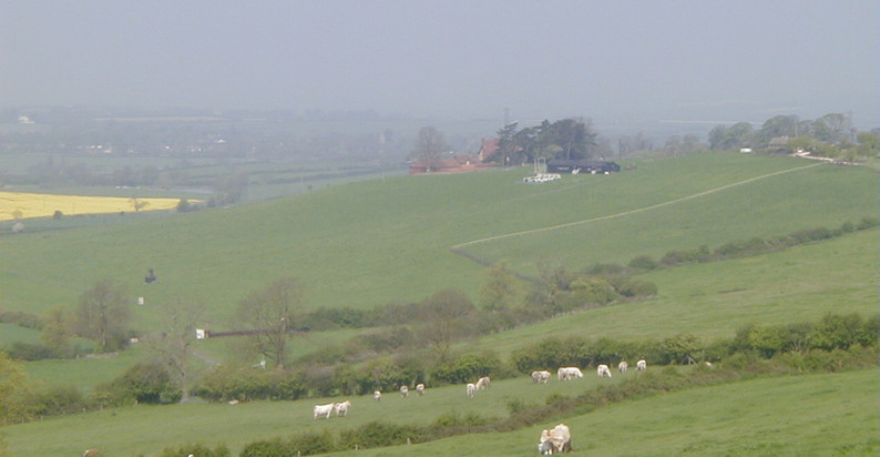 Dingley Valley