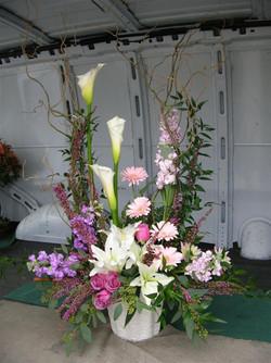 Floral_Jan_2010 041.jpg