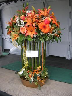 Floral_Jan_2010 040.jpg