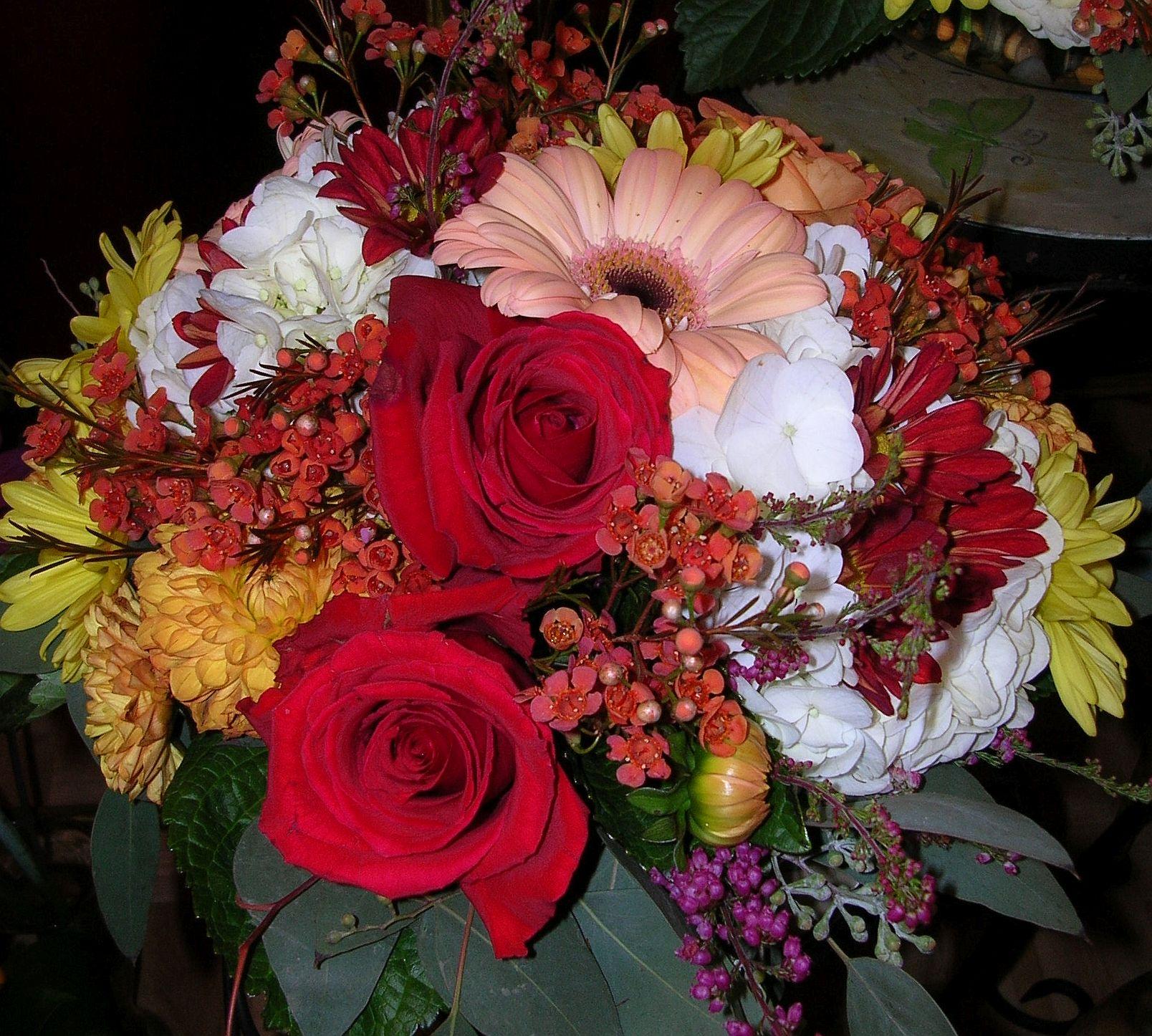 JFG_Oct_2009 032.jpg