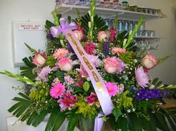 Floral_Aug_2009_ 065.jpg