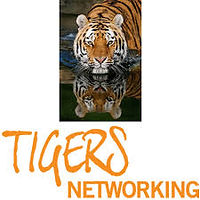 BNI Tigers Logo.jpg
