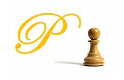 Princeton Chess Academy Logo 2.JPG