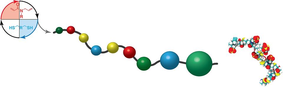 macromolecular chain4.png