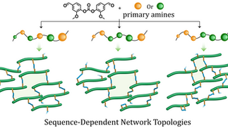 Thiol-Ene Networks from Sequence-Defined Polyurethane Macromers