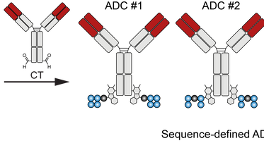 Hydrophilic Sequence-Defined Cross-Linkers for Antibody–Drug Conjugates