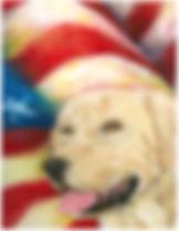 golden retriever flag copy.jpg