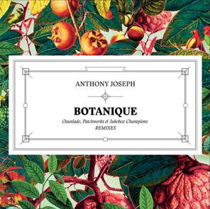 "Botanique - Osunlade Remix (2014) 12"" Vinyl EP"