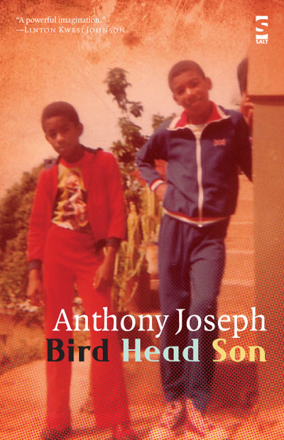 Bird Bird Head Son (Salt, 2009 - Hardback, 2012 - Paperback