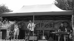 Bodfest and Chacombury Fest-024.jpg