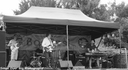 Bodfest and Chacombury Fest-018.jpg