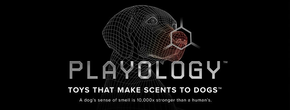 playology logo.png