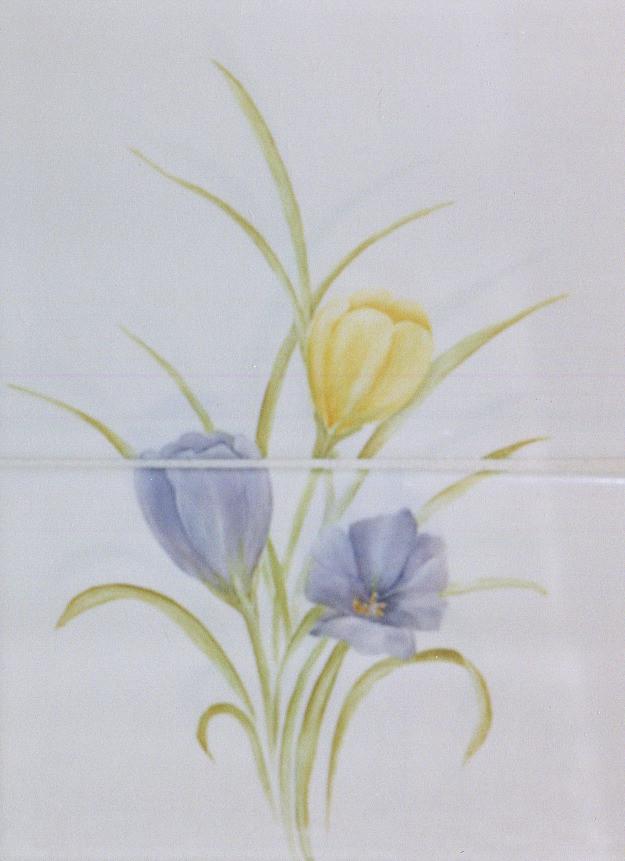 Accent Tiles Crocus Flowers