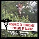 vignette urgences en danger.png